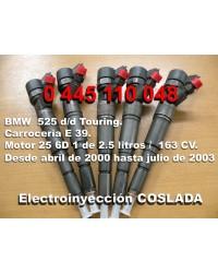0445110048 Inyector Common Rail Bosch