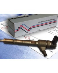 0445110106 Inyector Common Rail Bosch