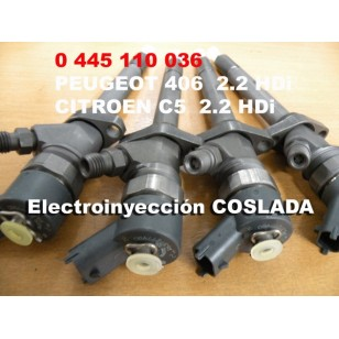 0445110036 Inyector Common Rail Bosch